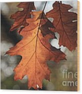 Golden Fall Leave's Close Up Wood Print