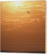 Golden Flight Wood Print