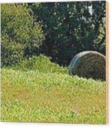 Golden Hay Day Wood Print