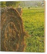 Golden Hay Field Wood Print