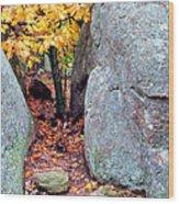 Golden Oak Through Boulders At Elephant Rocks State Park Wood Print