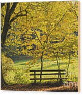 Golden October - Bench And Yellow Trees In Fall Wood Print