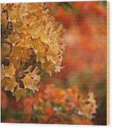 Golden Orange Radiance Wood Print