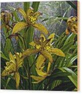 Golden Orchid Wood Print
