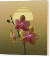 Golden Orchid Sunset Wood Print