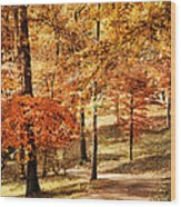 Golden Path Wood Print