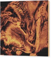Golden Retriever In Leather Chair Variation 2 Wood Print