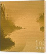 Golden Riverside Wood Print