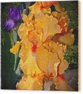 Golden Ruffles 2 Wood Print