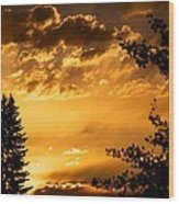 Golden Sky 2 Wood Print by Kevin Bone