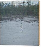 Golden Slipper Egret Sea Oats Wood Print