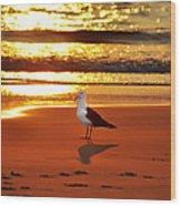 Golden Sunrise Seagull Wood Print