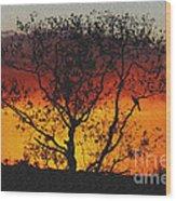Golden Sunset Over Circle B Bar Sandstone Wood Print