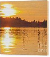 Golden Sunsset Wood Print