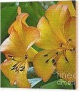 Golden Tropical Flowers Wood Print