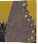 Golden Wings Wood Print