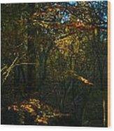 Golden Woodland Wood Print