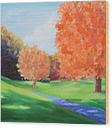 Golf Course In The Fall 1 Wood Print