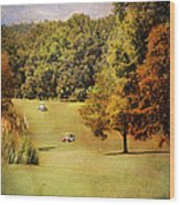 Golf Course V Wood Print