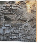 Golgotha The Place Of The Skull Wood Print
