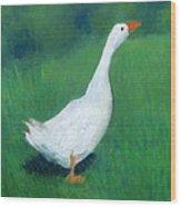 Goose On Green Wood Print