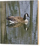 Goose Reflections Wood Print