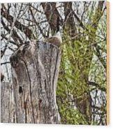 Goose Tree Wood Print