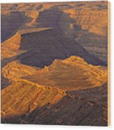 Goosenecks San Juan River Utah Wood Print