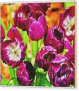 Gorgeous Tulips Wood Print