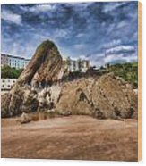 Goscar Rock Tenby 4 Painted Wood Print