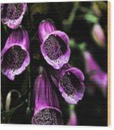 Gothic Bell Flower Wood Print