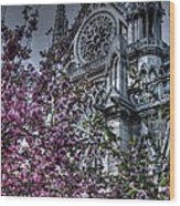 Gothic Paris Wood Print