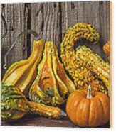 Gourds Against Wooden Wall Wood Print