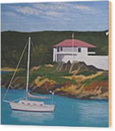 Government House At Cruz Bay Wood Print