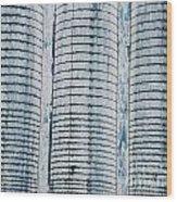Grain Elevator Wood Print