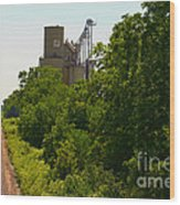 Grain Processing Facility In Shirley Illinois 5 Wood Print
