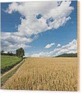 Grainfield Blue Sky Wood Print