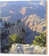 Grand Canyon 18 Wood Print