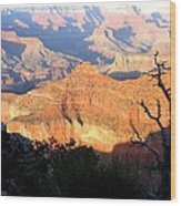 Grand Canyon 62 Wood Print