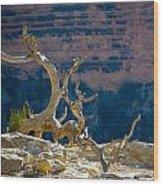 Grand Canyon Dead Tree Wood Print