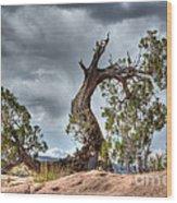 Grand Canyon Facing The Storm Wood Print
