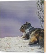 Grand Canyon Squirrel Wood Print