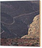 Grand Canyon Trail Wood Print