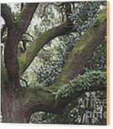 Grand Dame Of Savannah Wood Print