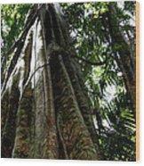 Grand Old Lady Wood Print