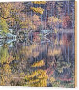 Grand Reflections Wood Print