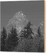 Grand Teton Bw Wood Print