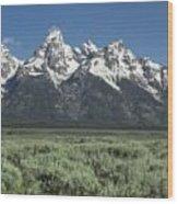 Grand Teton Spring Wood Print