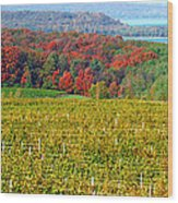 Grand Traverse Winery In Autumn Wood Print