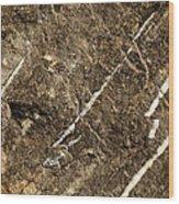 Granite Marbling India Wood Print
